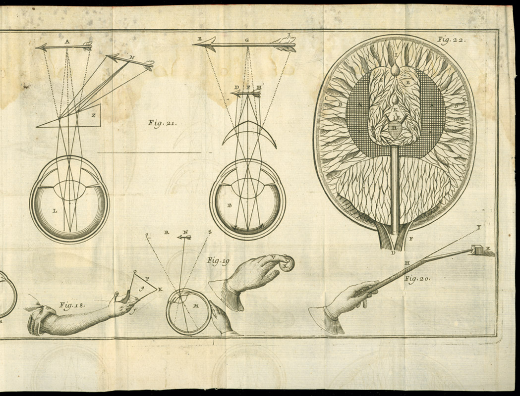 René Descartes, L'homme…. These drawings show the influence of Descartes' knowledge of mathematics and geometry on his perception of how the body works.